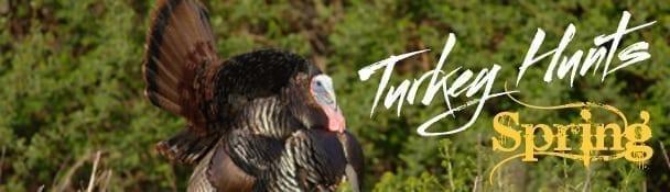 Turkeyhunts.jpg