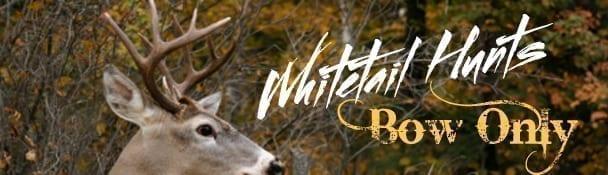 Whitetailhunts.jpg